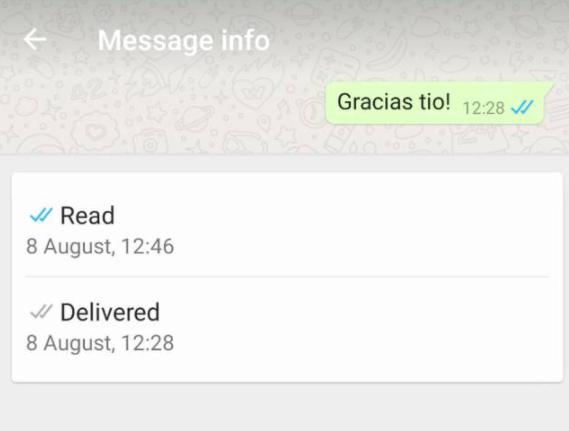 whatsapp orario lettura messaggio