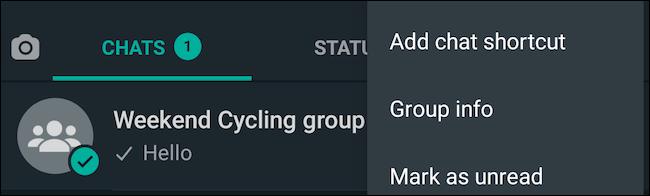Visualizza le informazioni sul gruppo su WhatsApp