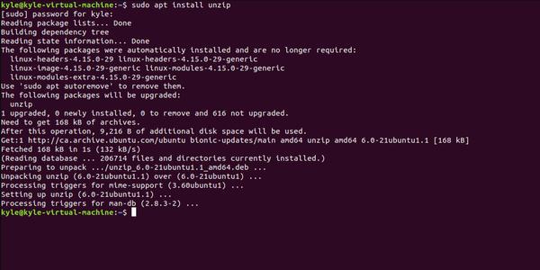 """terminale di comando linux con il comando """"install unzip"""" inserito ed elaborato"""