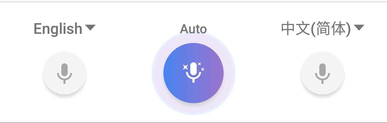 conversazione google traduttore