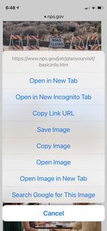 come eseguire una ricerca inversa di immagini in Android ios asearch4