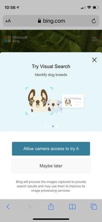 come eseguire una ricerca inversa di immagini in Android ios bing2