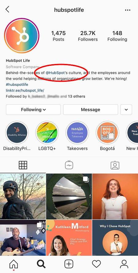 account-in-instagram-bio