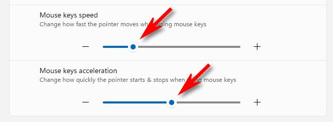 Usa i cursori di velocità e accelerazione dei tasti del mouse per far muovere il puntatore del mouse più velocemente o più lentamente.