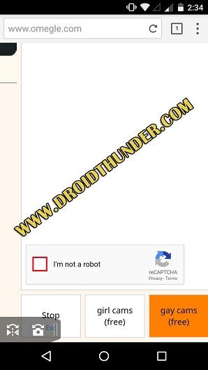 Omegle-Video-Chat-su-Android-puffin-browser-screenshot-27